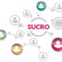 Oprogramowanie KQS – firma Sucro